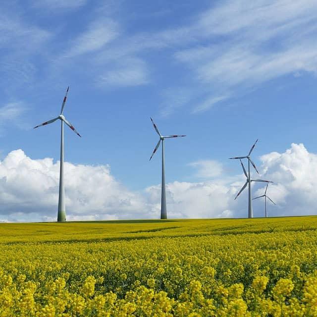Acoustique environnementale - Parc éolien